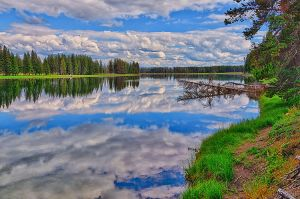 Yellowstone River Reflections.jpg
